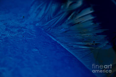Feather Of Ice Print by Sverre Andreas Fekjan