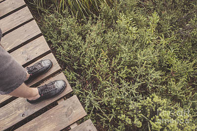 Sneakers Photograph - Feet Of A Man Mountaineering On A Rainforest Track by Jorgo Photography - Wall Art Gallery
