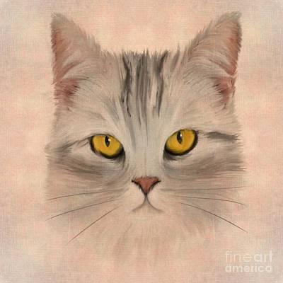 Claw Digital Art - Felis Catus by John Edwards