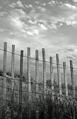 Bamboo Fence Photograph - Fence At Jones Beach State Park. New York by Gary Koutsoubis