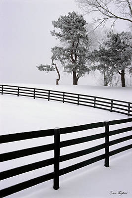 Winter Photograph - Zig Zag by Bruce Thompson