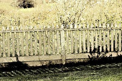 Fenced In Print by Bonnie Bruno