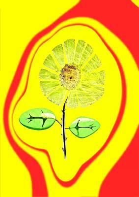 Feng Shui Energy Print by Feng Shui