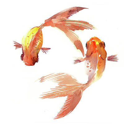 Koi Drawing - Feng Shui Koi Fish by Suren Nersisyan