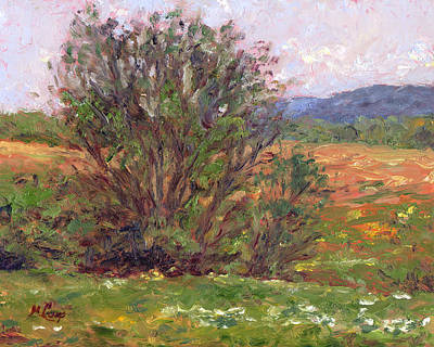 Field In Spring Print by Michael Camp