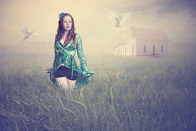 Dove Photograph - Field Of Dreams by Baden Bowen