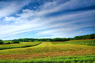 Note Cards Photograph - Field Of Dreams Two by Steven Ainsworth
