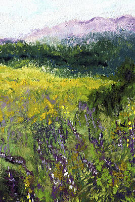 Pastels Painting - Field Of Flowers by David Patterson