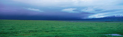 Field Of Grass Under Winter Storm Print by Panoramic Images