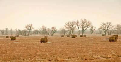 Field Of Hay Print by James Steele