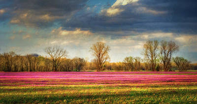 Field Of Crops Photograph - Fields Of Clover by James Barber