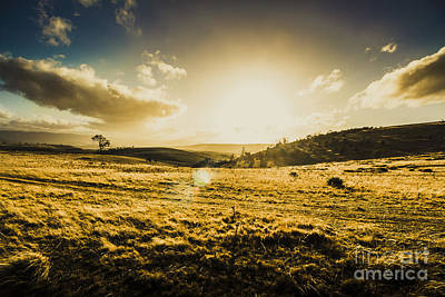 Pasture Scenes Photograph - Fields Of Natural Light by Jorgo Photography - Wall Art Gallery