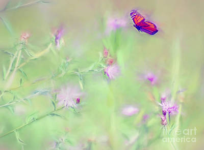 Monarch Photograph - Fighting For Flight by Kerri Farley