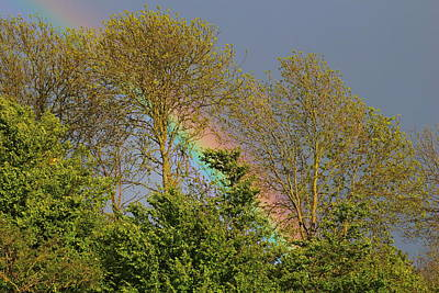 Red Photograph - Find The Pot Of Gold by Rumyana Whitcher