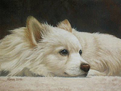 Pomeranian Painting - Finley by Karen Coombes