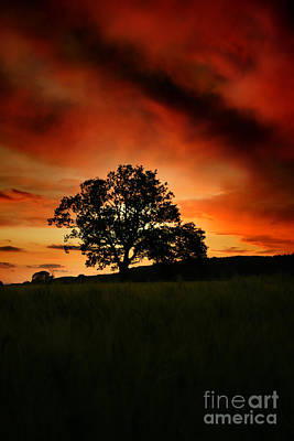 Fire On The Sky Print by Angel  Tarantella