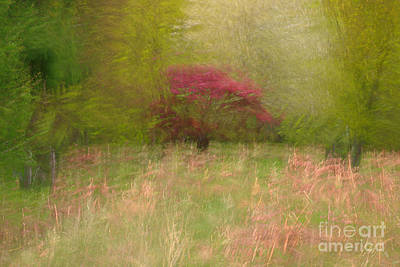 Icm Photograph - Fireball  In Motion II by Richard Thomas