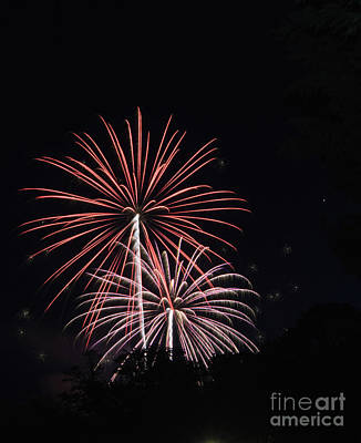 Photograph - Fireworks 1 by Janie Johnson