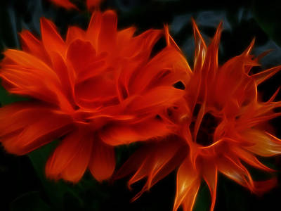 Firey Red Orange Flowers Abstract Print by Cindy Wright