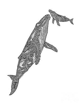Humpback Whale Drawing - First Breath by Carol Lynne