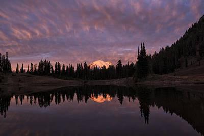 First Light On Mount Rainier Print by Loree Johnson