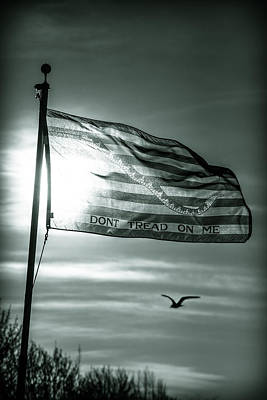 First Navy Jack Print by Chris Bordeleau