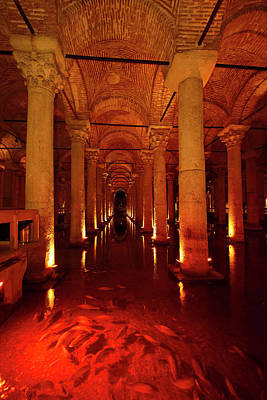 Turkey Photograph - Fish In Red Light With Marble Columns Of The Underground Basilic by Reimar Gaertner