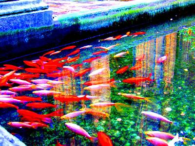Animals Print featuring the photograph Fish Pond by Roberto Alamino