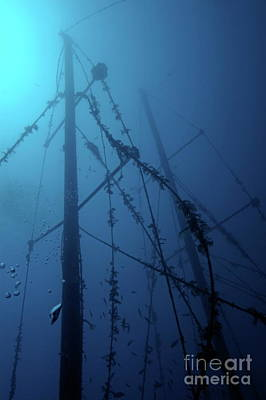 Fish Swimming Around The Mast Of The Le Voilier Shipwreck Underwater Print by Sami Sarkis
