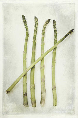 Asparagus Photograph - Five by Priska Wettstein
