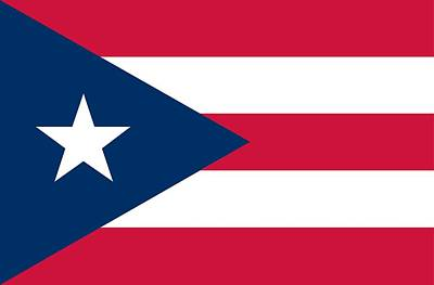 Puerto Rico Painting - Flag Of Puerto Rico by Unknown