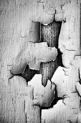 Flake Print by Tom Druin
