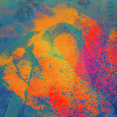 Bright Photograph - Flaming Foliage 1 by Ari Salmela