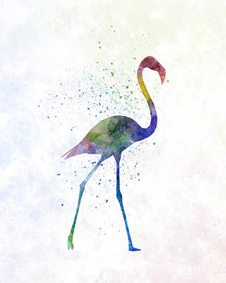 Greater Flamingo Painting - Flamingo 01 In Watercolor by Pablo Romero