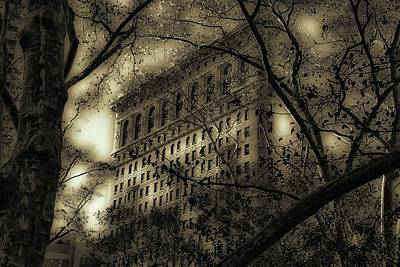 Flat Iron Through The Trees Print by Jeff Watts