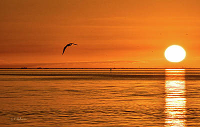 Flight At Sunset Print by Christopher Holmes