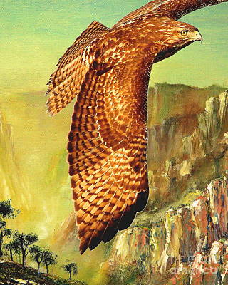 Red Tail Hawks Mixed Media - Flight Of The Red Tailed Hawk by Wingsdomain Art and Photography