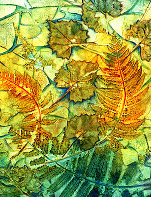 Floating Leaves And Fern Fronds Print by Carla Parris
