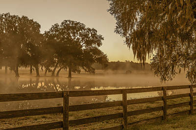 Flooded Pasture Print by Capt Gerry Hare