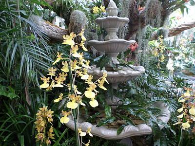 St. Louis Mixed Media - Floral Birdbath by Don Koester