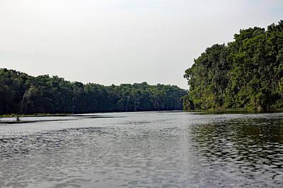 Florida's Wacissa River-springs Print by Deb Hayes