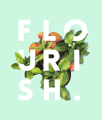 Flourish Drawing - Flourish by Uma Gokhale