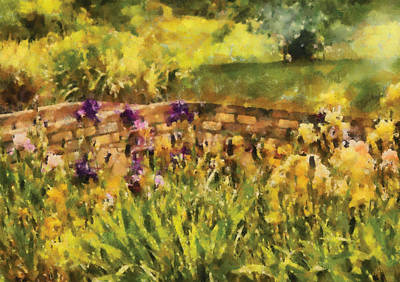 Flower - Iris - By The Bridge Print by Mike Savad