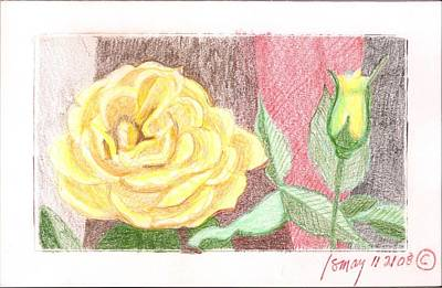Rod Ismay Drawing - Flower 4 - Yellow Rose And Bud by Rod Ismay