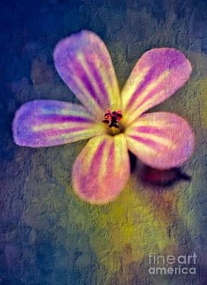 Soft Digital Art - Flower by Adrian Evans