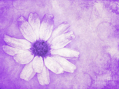 Flower Art II Print by Angela Doelling AD DESIGN Photo and PhotoArt