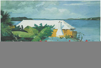Flower Garden And Bungalow Bermuda Print by Winslow Homer
