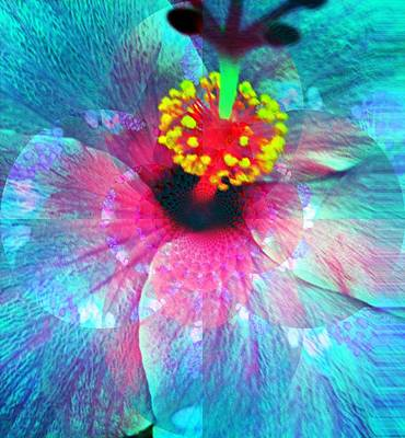 Flower Of Compassion Print by Fania Simon