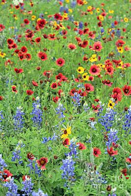 By Joe Jake Pratt Photograph - Flower Quilt by Joe Jake Pratt