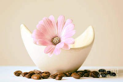 Flower With Coffee Bean Print by SK Pfphotography